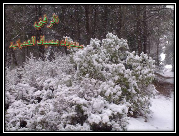 ثلوج مصياف 2007 5-1-2012